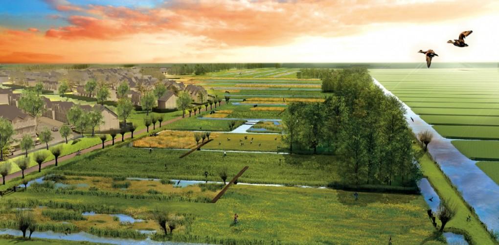 Omgeving Westergouwe